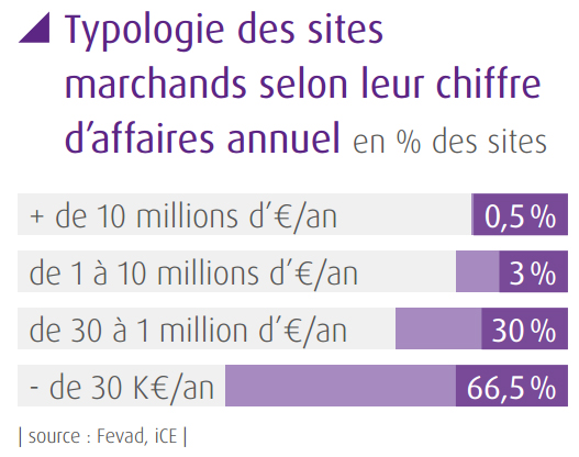 138,000 French ecommerce sites and their sales volumes