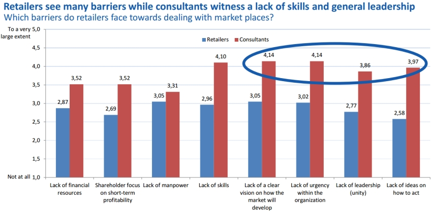 Retailers see many barriers while consultants witness a lack of skills and general leadership
