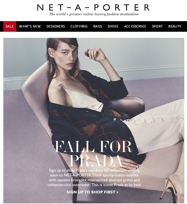 The email Net-a-porter sent to its customers.