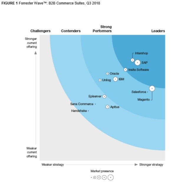 Leaders in ecommerce software